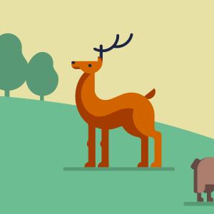 dierentuin friesland